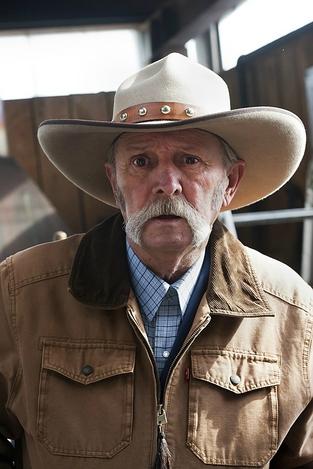 Old Cowboy II