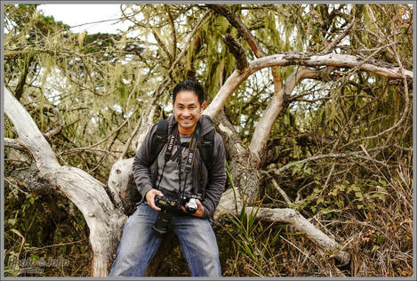 Joe Gunawan - Point Lobos