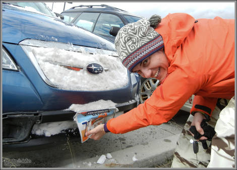 Encounter With A Snowbank
