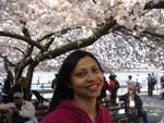 cherry_blossom_girl.JPG