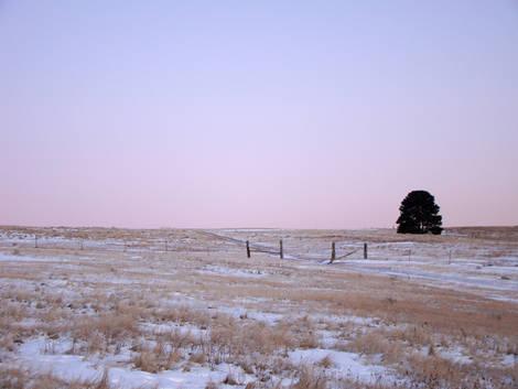 Lone Pine Winter Sunset