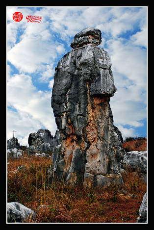Rock forest in Yunun,China
