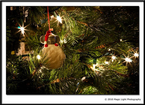 Holidays - December Photo Project