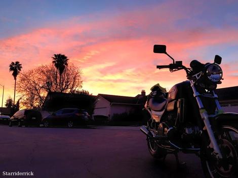 Sabre...Sunset