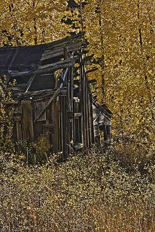 Weathered, Battered and Neglected