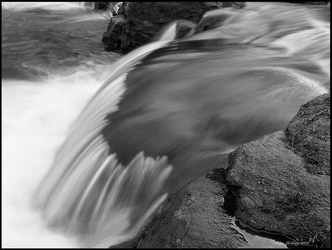 Water in Black and White
