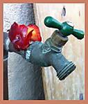 A_snap_it_up2_plumbing.jpg