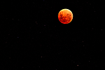Blood-moon.jpg