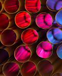 Cells-2.jpg