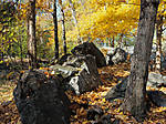 EastCoastFallColors1_1000.jpg