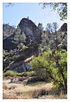 PINNACLES_X1_005_Fall.jpg