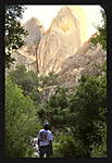 PINNACLES_X1feelin_small.jpg