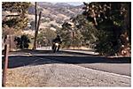 Road_Rider.jpg