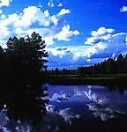 Summertime-Blues-Wx.jpg