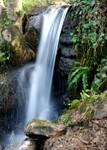 WaterfallMed.JPG