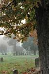 cemetery_copy_1_2_.jpg