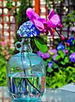 glassbottle.jpg
