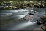 little-river-01.jpg