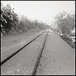 track-kodak.jpg