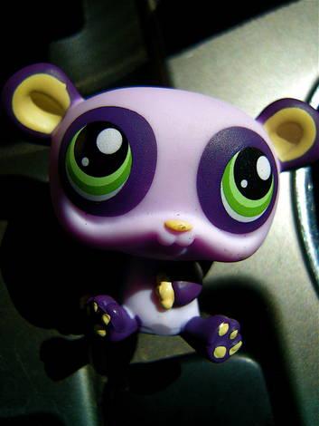 maizie's toy