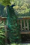 241006LA_Arboretum_02_-_s.jpg