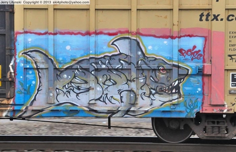 A shark on the rails