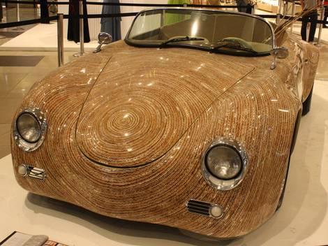 Indigenous Car?