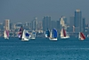 Spinnakers_in_San_Diego_Bay_ARC_1165.jpg