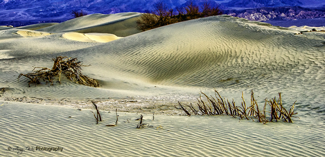 View of the Death Valley Sand Dome