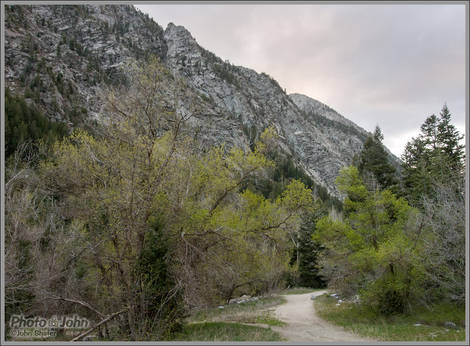 Base Of Little Cottonwood Canyon