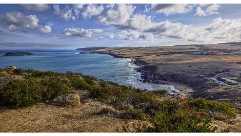 Petrel Cove II