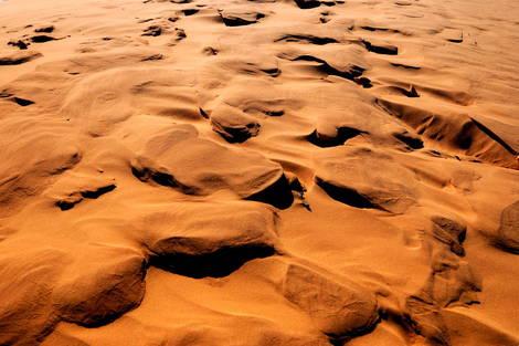 Coral Dunes