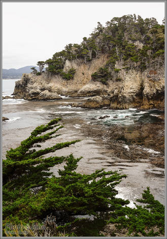 Carmel Coastal Cliffs - Sony RX1