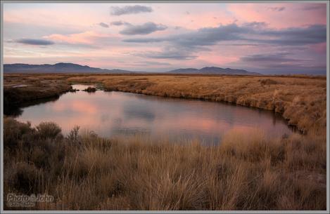 Desert Springs Sunset