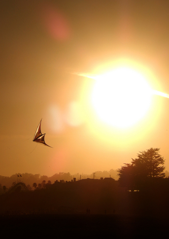 Kite at Sunset