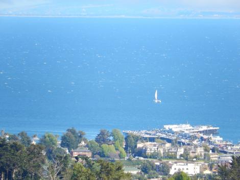 Monterey Bay Superzoom