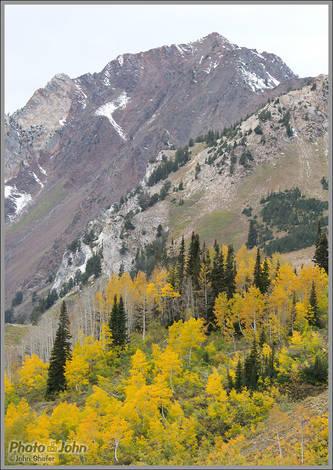 Mt. Superior And Fall Aspens