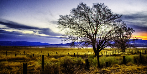 California Country side Landscape