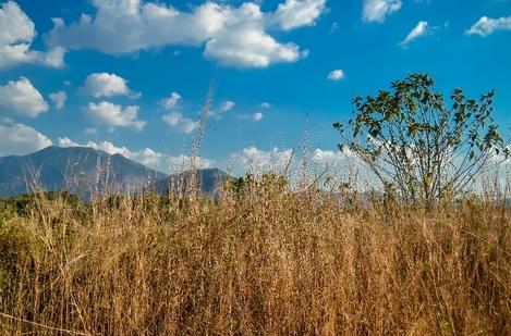hill of kerala