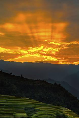 Sunrise at rice terrace