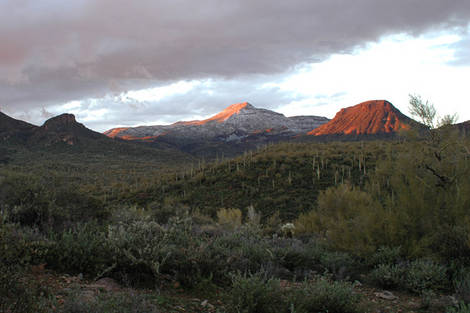 Snow in the Valley of the Sun