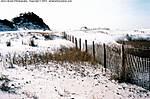 001_E_019_Leica-CL_35mm_Fu200_8Jan10_Okaloosa-Is_Dunes_sgc698.jpg