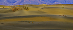 2014Death_Valley-0252-AW.jpg