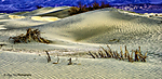 2014Death_Valley-Edit-s.jpg