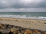 Just_the_Beach_DSCN0332_web1000.jpg