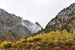 Low_Clouds_on_Sierra_Aspen_DSC_1084_web1000_sr72.jpg