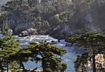 Point_Lobos_JRH8619psadjweb1000sr72.jpg