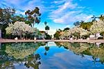 Reflections_on_the_Prado_ARC_1392_web1000.jpg