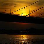 Rhein_Knie_Bruck.jpg