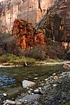 Zion_River_JRD0343.jpg